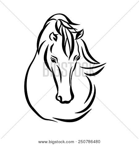 Horse head graphic vector photo free trial bigstock horse head graphic logo template vector illustration on white background stylish horse head outlin maxwellsz