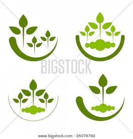 Reforestation conceptual logo. poster