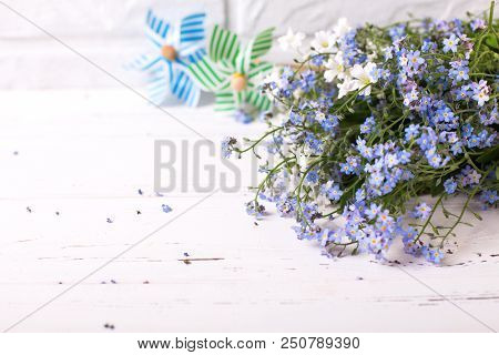 Bunch From Fresh Blue Forget-me-nots Or Myosotis Flowers And Decorative Windmills  Against  White Br