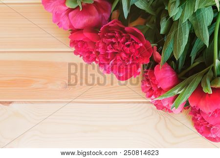 Red Peonies On Wooden Background. Flat Lay. Place For Text.