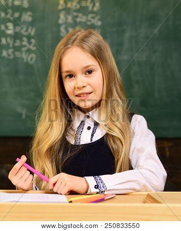 Happy Schoolgirl With Smiling Face In School. Happy Schoolgirl. Happy Schoolgirl At School Lesson. H