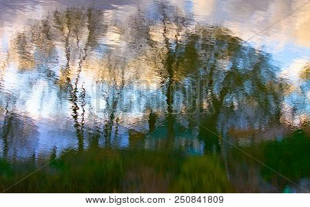 A Reflection In Some Water Of Some Tree And Grass Making Pretty Colors And Resulting In A Kind Of Ab