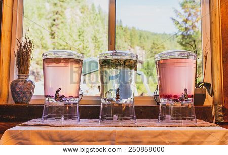 Three Pitchers Of Fruit-infused Water Stand Near A Window In A Forest Area.