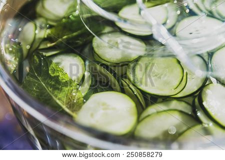 Fresh Cucumber Slices And Mint Leaves Float In A Plastic Pitcher.