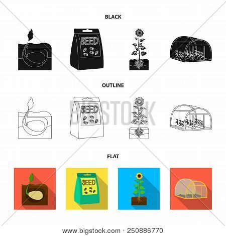 Company, Ecology, And Other  Icon In Black, Flat, Outline Style. Husks, Fines, Garden Icons In Set C