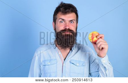 I Love Apples Man Handsome Hipster With Long Beard Eating Apple. Hipster Hungry Bites Enjoy Ripe App