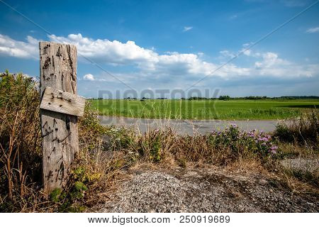 Fresh Green Grassland With White Clouds And Blue Sky. Old Vintage Wooden Pile Of Fence With Wild Flo