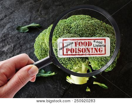 Magnifying Glass Examining Broccoli With Food Poisoning Label And Terms