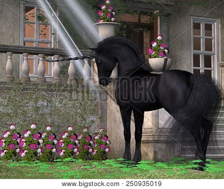 Enchanted Dark Unicorn 3d Illustration - A Black-coated Magical Unicorn Takes An Interest In Pink Be