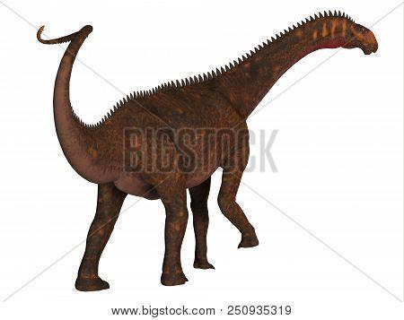 Mierasaurus Dinosaur Tail 3d Illustration - Mierasaurus Was A Herbivorous Sauropod Dinosaur That Liv