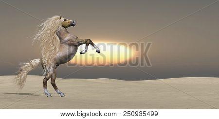 Sand Dune Palomino Horse 3d Illustration - The Sun Sets On A Golden Palomino Wild Stallion Showing H