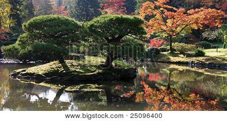 Arboretum, Seattle Japanese Garden #13