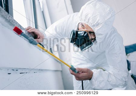 pest control worker in respirator spraying pesticides under windowsill at home poster