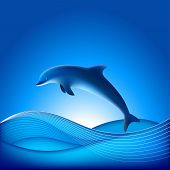 Vector Dolphin. File contains Gradient mesh poster