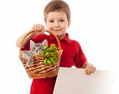 Little boy with empty banner and gray kitty in wicker isolated on white poster