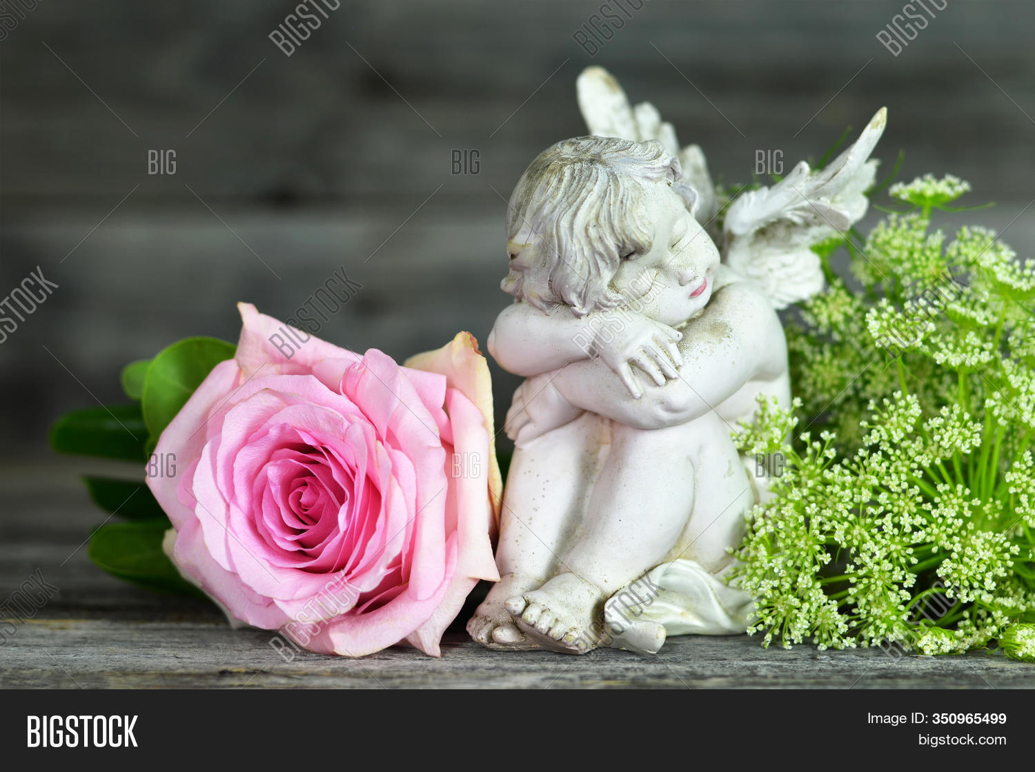 Guardian Angel Pink Image Photo Free