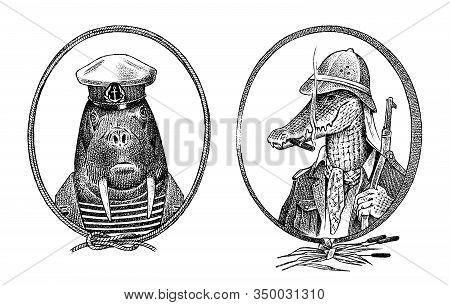Animal Character. Walrus Sailor And Crocodile Safari Hunter Or Alligator. Hand Drawn Marine Portrait