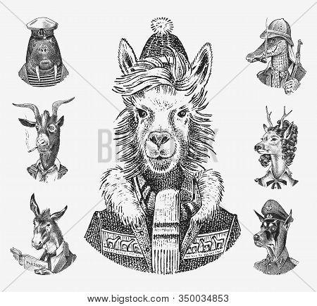 Animal Characters Set. Llama Skier Deer Lady Walrus Crocodile Smoking Goat Dog Donkey Alpaca. Hand D