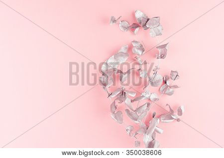 Valentine Day Background - Bouquet Of Silver Eucalyptus Branches On Pastel Pink Backdrop, Top View,