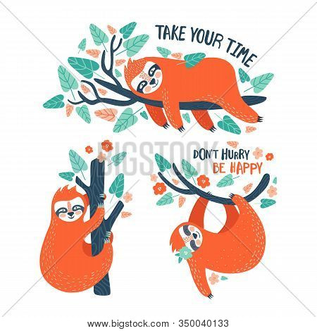 Set Of Funny Sloths In Different Postures Hanging On The Tree. Lazy Characters. Jungle Animal Collec