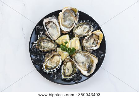 Fresh Oysters Seafood On A Black Plate Background / Open Oyster Shell With Herb Spices Lemon Rosemar