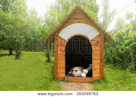 A Large Doghouse In A Childrens Park, With A Toy Soft Big Dog Inside. A Place For Childrens Games An