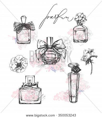 A Set Of Beautiful Bottles Of Perfume. Womens Perfume. Vector Watercolor. Elements For Design.templa