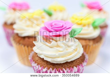 Close up macro shot of cup cakes or cupcakes with icing or frosting, pink, purple, yellow and cream with green leaves, rose and flower decorations photographed on a white background