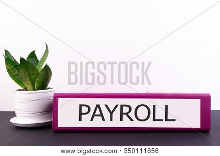 Payroll Office Folder Lies On A Dark Table With A Flowerpot And Flower On A Light Background