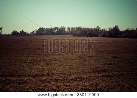 Empty Meadow In Autumn