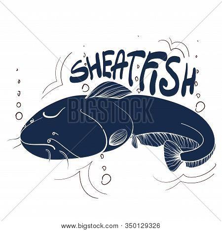 Fishing Logo. Sheatfish. Fishing Vector Illustration. Isolated On White.