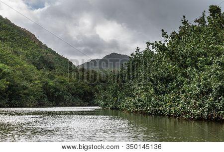 Nawiliwili, Kauai, Hawaii, Usa. - January 16, 2020: Up River View Of South Fork Wailua River With Gr