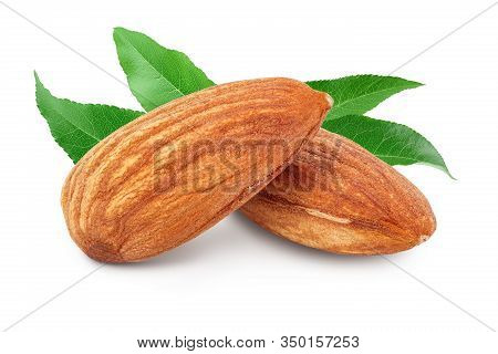 Almonds Nuts With Leaf Isolated On White Background With Clipping Path And Full Depth Of Field.