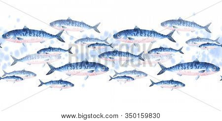 Seamless pattern of school of atlantic mackerel, scomber. Watercolor illustration fishes border on white background