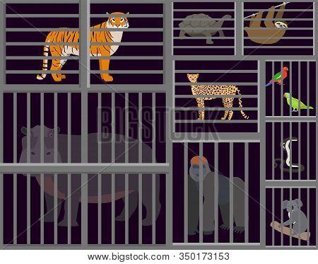 Wild Animals Beasts Captured In Cages Vector Illustration. Sad Animals Tiger, Hippopotamus, Cheetah,