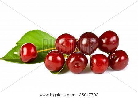 Ripe Juicy Cherries