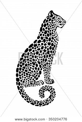 Jaguar Spotted Silhouette. Vector Sitting Wildcat Graphic Illustration. Black Isolated On White Back