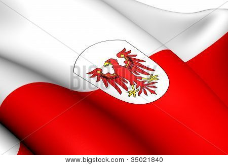 Flag of Tyrol Austria. Close Up. Front View. poster