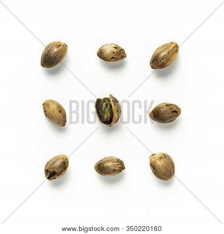 Creative Layout Of Hemp Seeds. Superfood Hemp Concept. Top View Of Nine Cannabis Or Hemp Seeds With