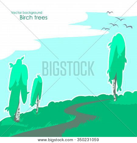 Background With Birch And Vegetation. Vector Birch Trees And Grass, Winding Path, Blue Sky