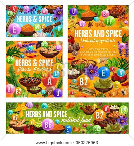 Herbs And Reach Of Vitamins Vector Design. Natural Vegetable Food, Pepper, Ginger And Cinnamon, Vani