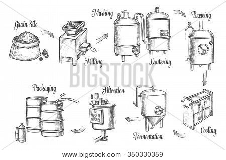 Beer Brewery Factory And Brewing Process Infographics, Vector Sketch Icons. Beer Production Line Fro