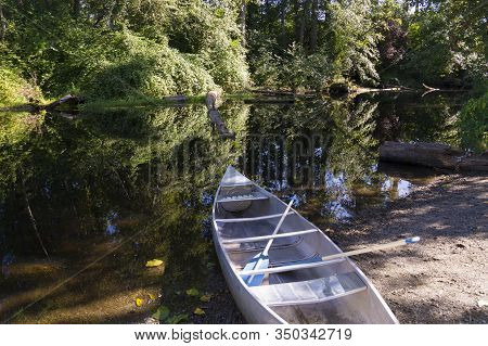 Usa. Washington State. Seattle. A Boat With Oars On The Shore Of Foster Island.