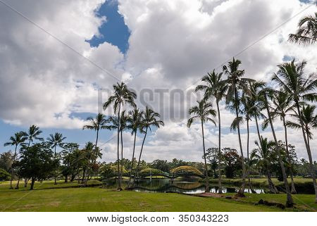 Hilo, Hawaii, Usa. - January 9, 2012: Wide View Of Green Park With Palm Trees And Bridge Over Waiake