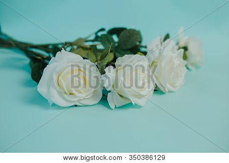Spring Freshness. White Roses With Green Leaves On Blue Background. Bunch Of Beautiful White Roses W
