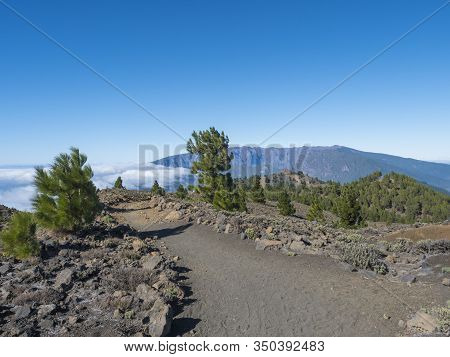 Volcanic Landscape With Lush Green Pine Trees, Colorful Volcanoes And Lava Rock Field At Path Ruta D