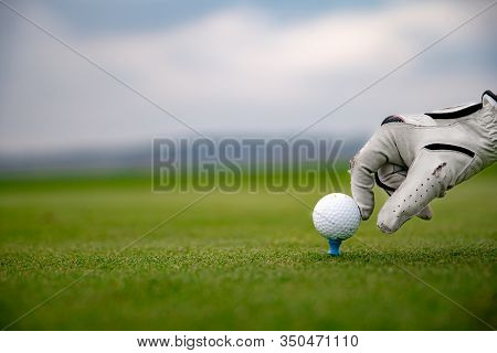 Hand In White Leather Glove Straightens Golf Ball On Green Golf Course