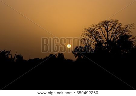 Sunset with silhouetted trees and dust, Bissau, Guinea-Bissau, Africa