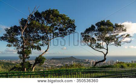 Trees Frame Panorama Over Waikiki, Honolulu And Diamond Head From The Tantalus Overlook On Oahu, Haw