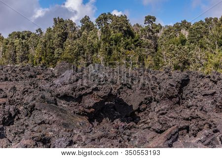 Kilauea Volcano, Hawaii, Usa. - January 9, 2012: 1961 Pile Of Black And Brown Lava As A Dam In Front